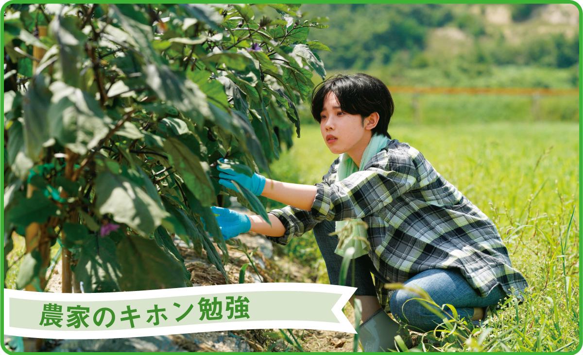 農家のキホン勉強